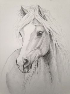 Sketches of horses, drawings of horses, pencil sketches easy, pencil sketch Amazing Drawings, Beautiful Drawings, Cool Drawings, Drawing Sketches, Drawing Ideas, Realistic Drawings, Drawing Poses, Drawing Tutorials, Painted Horses