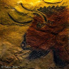 ES_160612 Espanja_0024 Altamiran museon luolataidetta Cantabriassa