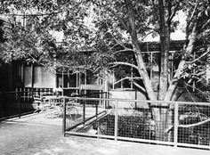 Vista de la fachada principal de la terraza de la planta alta, Casa habitacion, (dirección desconocida), México DF 1958  Arq. Felipe Salido Torres -   View of the main facade from the second story terrace, House in Mexico City, (address unknown), Mexico City 1958