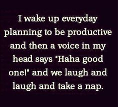 """I wake up every day planning to be productive and then a voice in my head says """"Haha good one!"""" and we laugh and laugh and take a nap."""