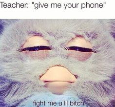 Lol don't touch my phone!