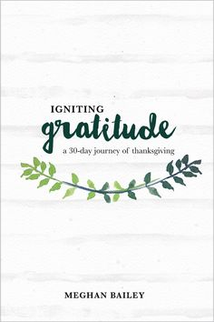 A 30-day Gratitude journal and devotional!