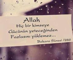 Duaa Islam, Allah Islam, Sufi, Islamic Quotes, Islamic Art, Beautiful Words, Cool Words, Cards Against Humanity, Faith