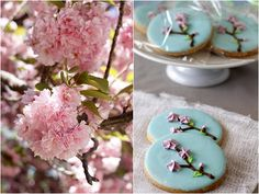 Went to Washington, D.C. last month on a family vacation, right at the height of cherry blossom  season. I was excited because I'd heard s...