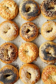 Different types of bagels inspired by the classic New York Bagels. Everything, Sesame, Poppy Seed and Asiago Cheese give you a few options to choose from! Types Of Bagels, New York Bagel, Ny Bagel, Asiago Cheese, Bagel Recipe, Falafels, Morning Food, Bread Recipes, Food And Drink