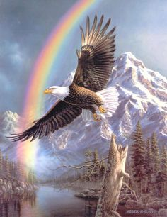 Free Eagle With Rainbow Cross-stitch Patterns - - Yahoo Image Search Results Animal Spirit Guides, Spirit Animal, Interior Design For Beginners, Wild Eagle, Eagle Drawing, Eagle Wings, Eagle Design, Pattern Images, Bird Species