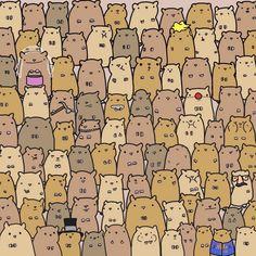 find the potato
