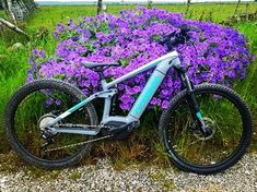 ⭐️ TREK ⭐️ . . Reposted from @mrs.jlm 💙🤩🚀🚀 . . @trekbikes . #ebikestagram #electricbikes #electricbike #bikegram #ebike #ebikes… Trek Bikes, Instagram, Bicycle