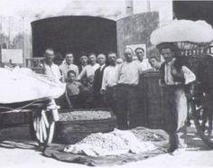 Museo Etnografico Alta Brianza - La bachicoltura