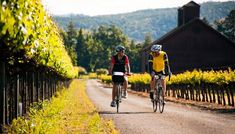 Conn Valley Biking through wine country is a bucket-list item worth checking off. Start your ride in downtown Saint Helena. Cycle down Pope Street to Old Howell Mountain Road, then take Conn Valley Road all the way to Lake Hennessey. The 12-mile one-way ride is great for beginners. You'll pass wineries and picnic areas, plus miles of vines along quiet rural roads. Stop off for a taste or two along the way.