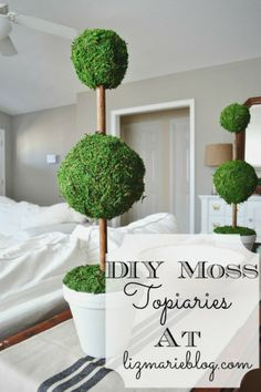 Easy DIY Moss Topiaries - Made from supplies @ Hobby Lobby! Would probably be nice on the entertainment center.