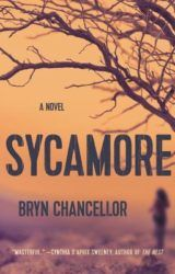 Sycamore | a novel by Bryn Chancellor