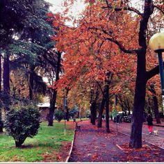 L'Autunno ai Giardini Margherita, Foto di Ariannabologna
