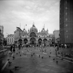 Venice by davers