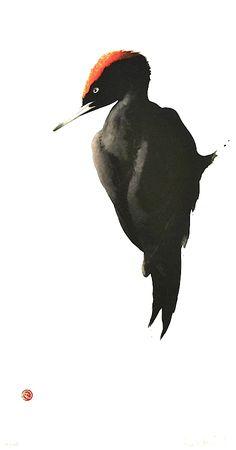 Black Woodpecker by Karl Mårtens - Litografier « Edition Vulfovitch