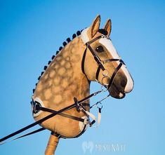 The most important role of equestrian clothing is for security Although horses can be trained they can be unforeseeable when provoked. Riders are susceptible while riding and handling horses, espec… Hobbies For Women, Hobbies To Try, Hobby Horse, Horse Tack, Breyer Horses, Stick Horses, Types Of Horses, Horse Crafts, Equestrian Outfits