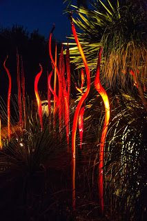 Into the night | Walking Arizona