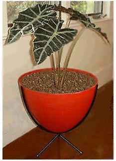 retro bullet planter.  comes every color imaginable in 3 sizes $160-175 with stand