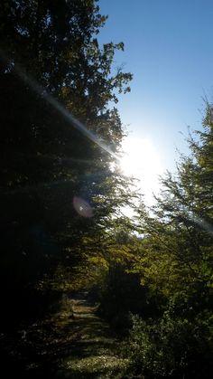 Počasie Stará Ľubovňa http://pocasie.pozri.sk/predpoved-pocasia/staralubovna