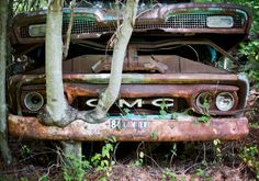 Take A Tour Of The World's Largest Known Classic Car Graveyard