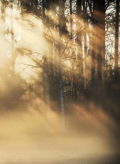 Behind The Light by Mikko Haapasaari on 500px