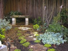 12 Budget-Friendly Backyards: In this garden, a simple stone bench provides a place to be still and enjoy the play of light and shadow. (Design by Pat Wagner) From DIYnetwork.com
