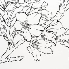 A sneak peak into today's illustration. Feels good knowing that with each illustration getting a little more complex, I'm still able to handle the difficulty and create the work I imagined. Design Cards, Becca, Line Drawing, Cherry Blossom, Art Art, Feel Good, Ranch, Moose Art, Feels