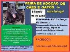 Feira de Adoção em Jacarepaguá (05/07)!