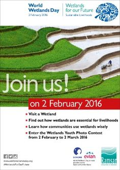 February 2 - World Wetlands Day World Wetlands Day, Photo Contest, February, Pageant Photography, Photography Challenge