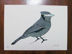 #Ilustração #Gravura Pássaros de Gabriela Gil por R$40