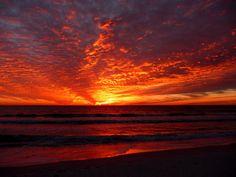 Red sky at night in Sarasota