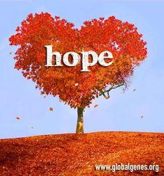Hope tree.