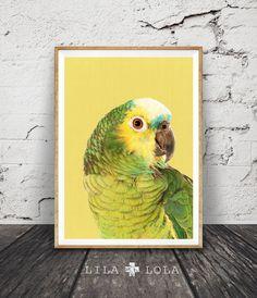 Print 156 - Bird print, tropical wall art, colourful decor, parrot, modern minimal photography, bright yellow.  A contemporary downloadable design,