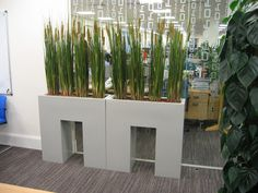 Office Breakout area with curvy trough plant displays reception