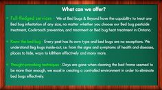 For proper Bed Bug Removal, one needs to get in touch with the most top-notch service providers in town. So what are you waiting for, kindly call us today and we ensure you to get rid of them in no time!