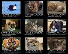 Catloaf D&D Alignment Chart - credit to: swipurr.com