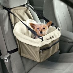 Personalized Pet Car Booster Seat from Miles Kimball keeps your pet safe!