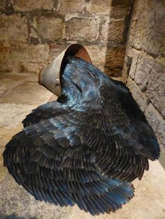 """Kate MccGwire, Secrete (mixed media with magpie feathers) "" Textile Sculpture, Sculpture Art, Feather Art, Art Courses, Fantastic Beasts And Where, Environmental Art, Beach Art, Installation Art, Les Oeuvres"
