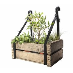 Create a hanging garden with balcony braces and gain space by going up! Order your balcony braces online to organise your perfect urban garden.
