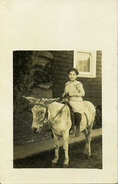 Wishing for a Pony Vintage photo, rainydaydreamco on Etsy Vintage Pictures, Vintage Images, Pony Rides, Vintage Horse, Horse Girl, Altered Books, Donkey, Old Photos, Book Covers