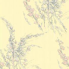 WILD FLOWERS 69/11143 - New Contemporary Two - Cole & Son