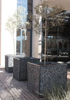All sizes | Gabion Planters | Flickr - Photo Sharing!