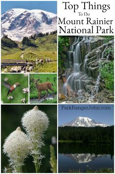 Top things to do at Mount Rainier National Park in Washington. This park is close to Seattle and makes a great bucket li… – travel National Park Lodges, Us National Parks, Places To Travel, Places To See, Mt Rainier National Park, Road Trip Destinations, Park Photos, United States Travel, Travel Usa