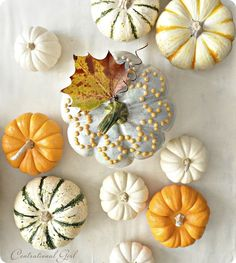 Love this pumpkin shot by @Centsational Girl (also a great split pea soup recipe!)
