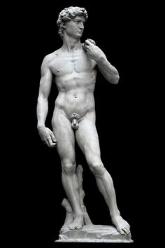 """David"" is a masterpiece of Renaissance sculpture created between 1501 and by the Italian artist Michelangelo Miguel Angel, Auguste Rodin, Statues, Plaster Cast, Renaissance Artists, The V&a, Chef D Oeuvre, Jan Van Eyck, Chiaroscuro"