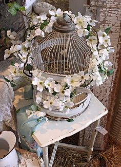 white blossoms white birdcage