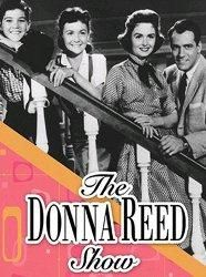 """Donna Reed Show.. I adored this show.. I still have the records """"my Dad... By Paul Peterson and  """"Johnny's Angel by Shelly F."""