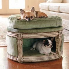 If you have pets living with you we have some pet friendly decor ideas and some nice furniture objects for your pets.