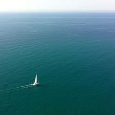 small speck in the big wide ocean