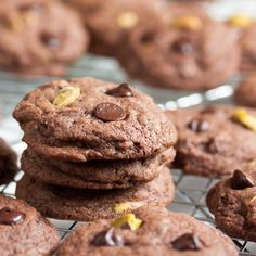 Rich chocolate cookies with crunchy pistachios, sweet tart candied orange peel, plus orange liqueur. Delicious!